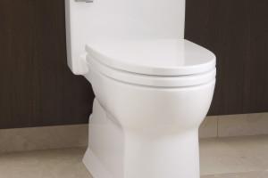 http://www.theplumbingplace.com/wp-content/uploads/2015/03/Soiree-toilet-300x200.jpg